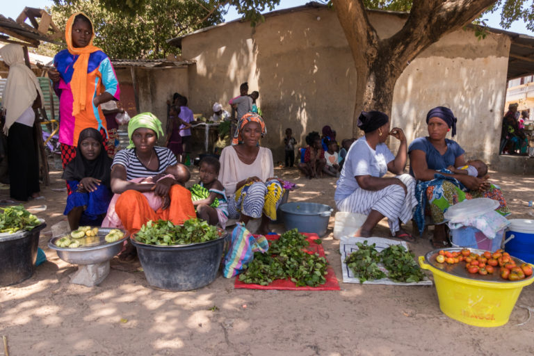 20190422-Gambia trip_031